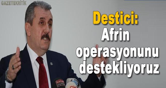 Destici: Afrin operasyonunu destekliyoruz