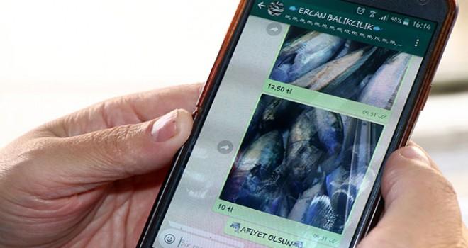 Tezgâhını WhatsApp'ta açıyor, balık satışı yapıyor