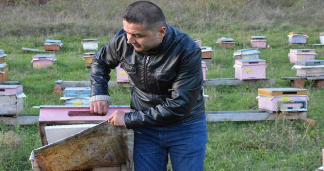 Sinoplu arıcı, ballarını internetten satıyor