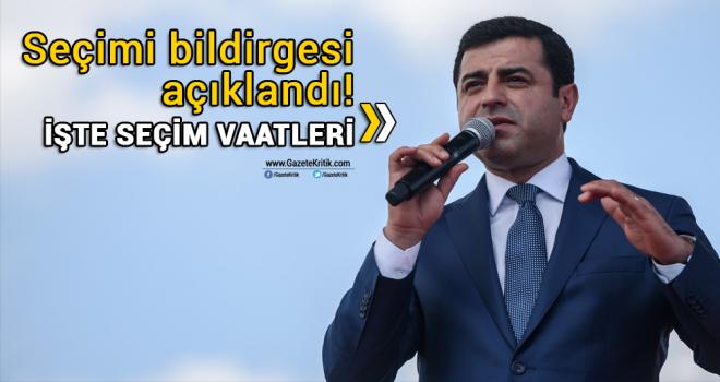 Selahattin Demirtaş'ın 24 Haziran erken seçimi bildirgesi açıklandı! İşte seçim vaatleri