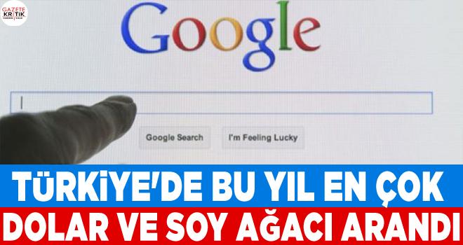 Google: Türkiye'de bu yıl en çok dolar ve soy ağacı arandı