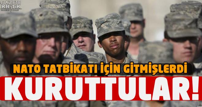 NATO tatbikatına gitmişlerdi… Kuruttular!