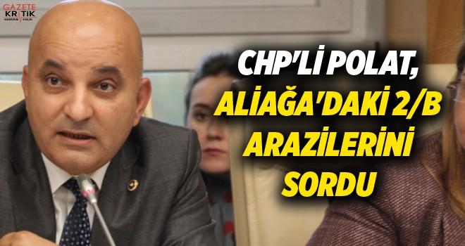 CHP'Lİ POLAT, ALİAĞA'DAKİ 2/B ARAZİLERİNİ SORDU