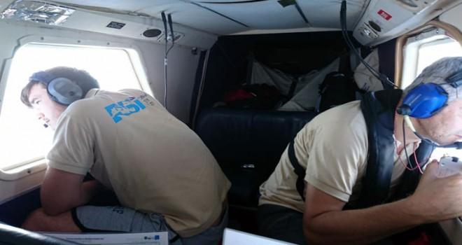Karadeniz'de yunus varlığı 2 uçaktan sayılacak