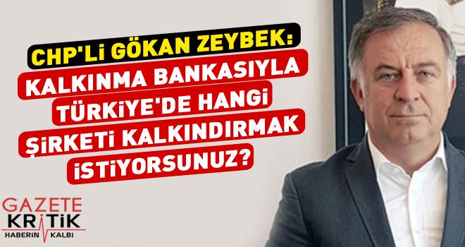 CHP'li Gökan Zeybek : Kalkınma Bankasıyla Türkiye'de hangi şirketi kalkındırmak istiyorsunuz?