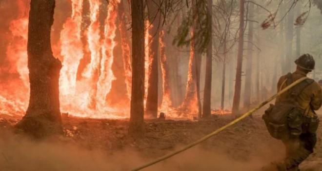 Tarihin en korkunç yangınında şok iddia: Sebebi kavga mı?