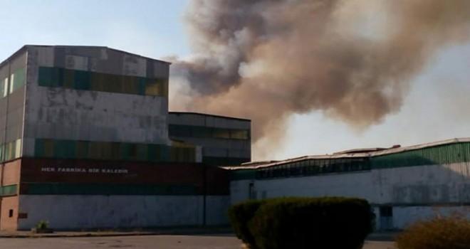 Dalaman'da kağıt fabrikasında yangın