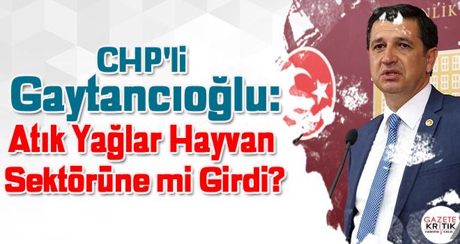 CHP'li Gaytancıoğlu:Atık Yağlar Hayvan Sektörüne mi Girdi?