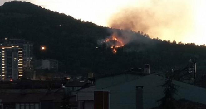 Tokat'ta ormanlık alanda yangın