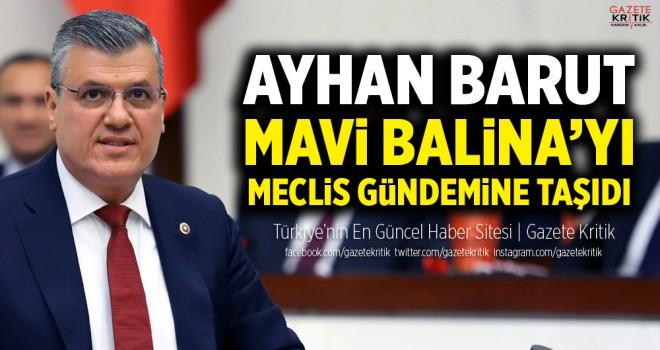 Ayhan Barut, Mavi Balina'yı Meclis gündemine taşıdı