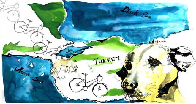 'Türkiye'de tanıştığım sokak köpeği nasıl hayatımı değiştirdi?'