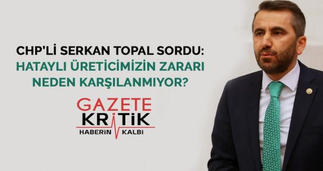 CHP'li Serkan Topal sordu: Hataylı üreticimizin zararı neden karşılanmıyor?