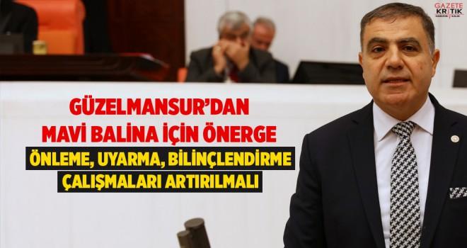 GÜZELMANSUR'DAN MAVİ BALİNA İÇİN ÖNERGE