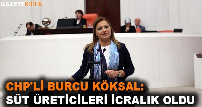 CHP'li Burcu Köksal:Süt üreticileri icralık oldu