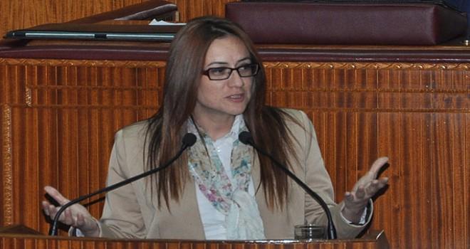 KKTC'li milletvekili Derya: Rumlar, 10 sene sonra Türkiye ile komşu olacak