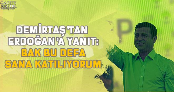 Demirtaş'tan Erdoğan'a yanıt: Bak bu defa sana katılıyorum