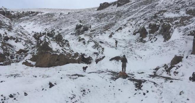PKK'ya ağır darbe! MİT bilgi verdi, jandarma ele geçirdi