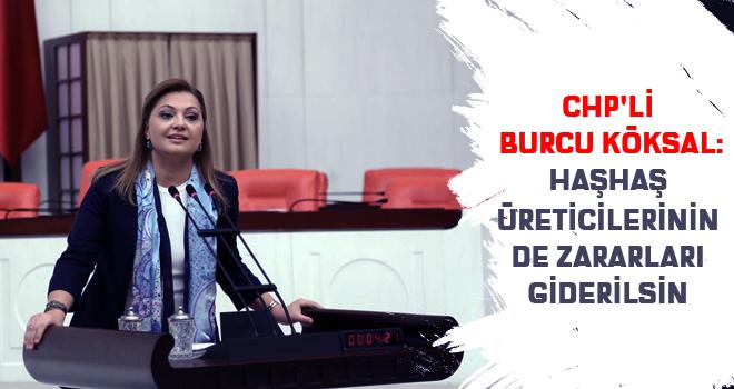 CHP'li Burcu Köksal:Haşhaş üreticilerinin de zararları giderilsin