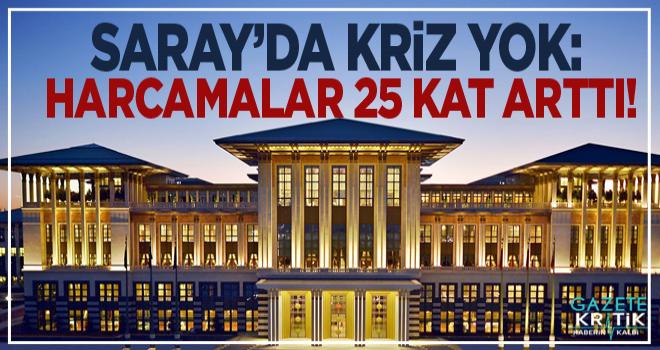 Saray'da kriz yok: Harcamalar 25 kat arttı!