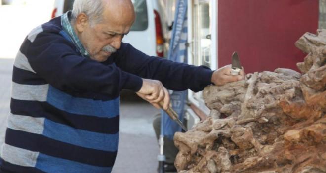 Görenleri şaşırttı: 500 yıllık ağaç kökü