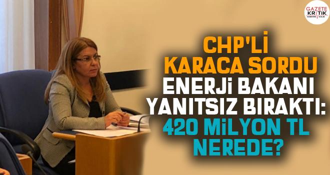CHP'Lİ GÜLİZAR BİÇER KARACA SORDU ENERJİ BAKANI...