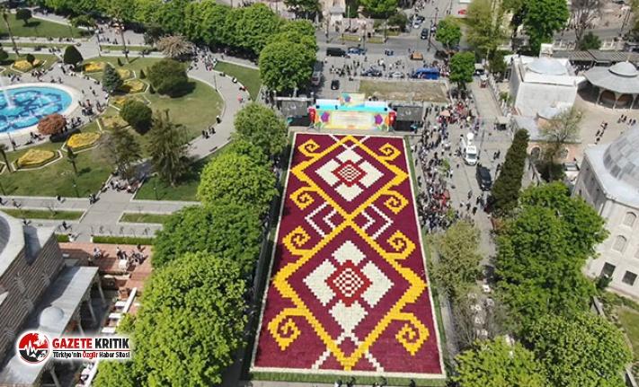Sultanahmet'e 1460 metrekarelik lale halı