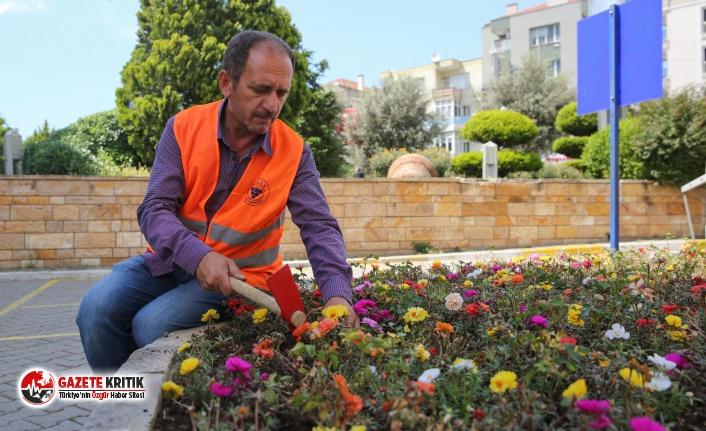 Buca çiçek bahçesine dönecek:3 ayda 30 bin çiçek