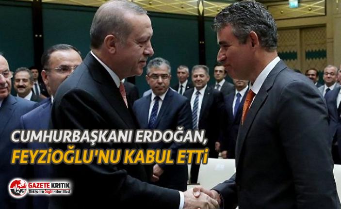 Cumhurbaşkanı Erdoğan, Feyzioğlu'nu kabul...