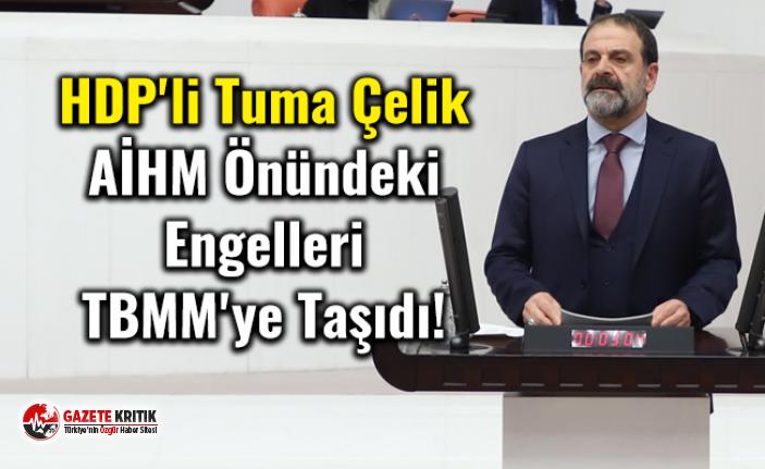 HDP'li Tuma Çelik AİHM Önündeki Engelleri TBMM'ye Taşıdı!