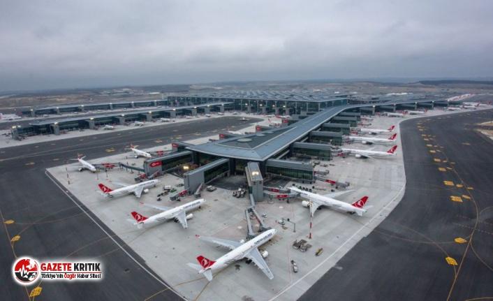 İstanbul Havalimanı'nı arılar bastı