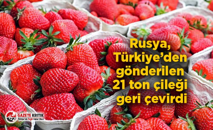 Rusya, Türkiye'den gönderilen 21 ton çileği...