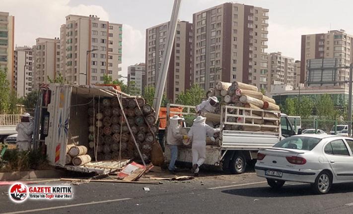 Arı kovanı yüklü kamyonet devrildi, çevredekiler...