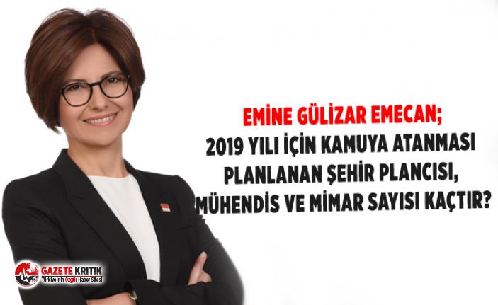 CHP'li Emine Gülizar EMECAN; 2019 yılı için...