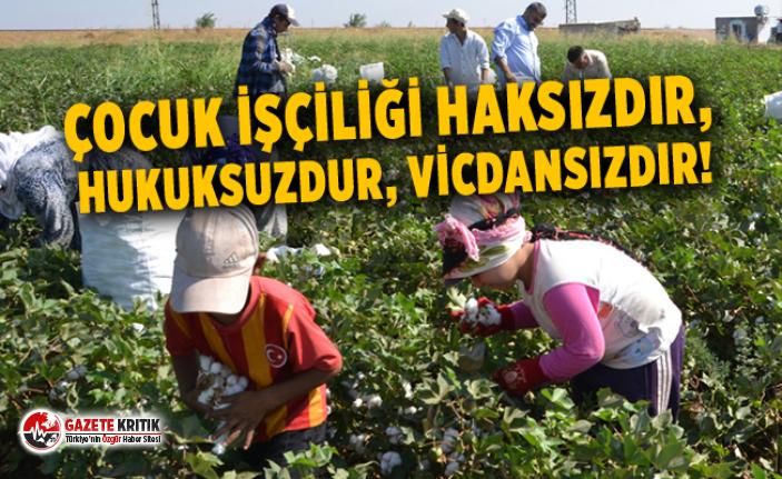 Çocuk işçiliği haksızdır, hukuksuzdur, vicdansızdır!