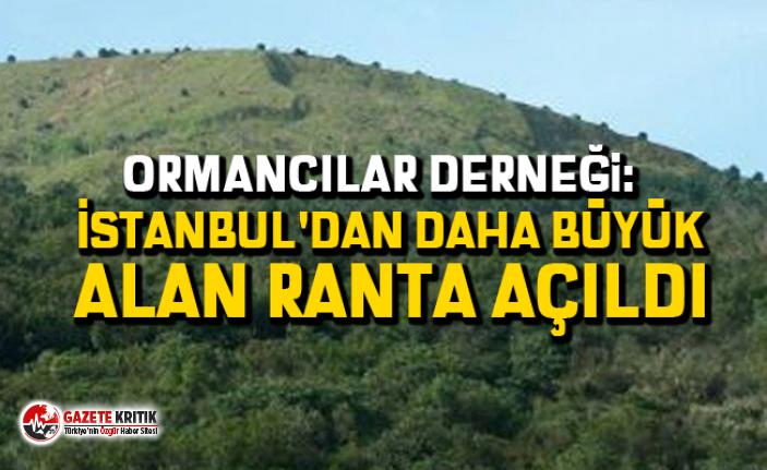 Ormancılar Derneği: İstanbul'dan daha büyük...