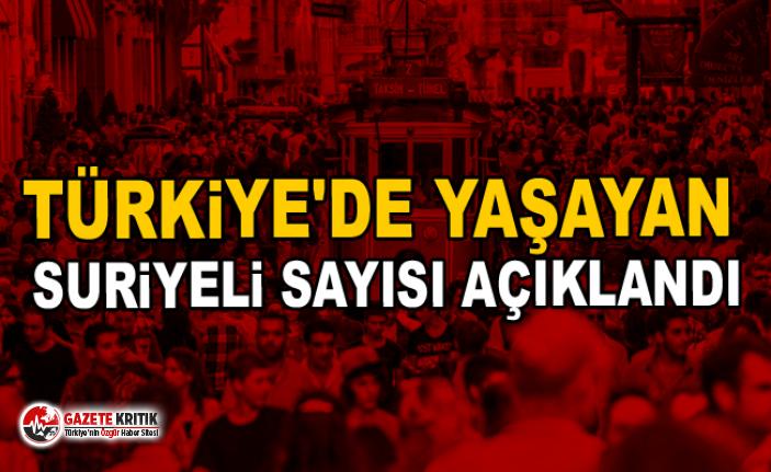 Türkiye'de yaşayan Suriyeli sayısı açıklandı istanbul istiklal caddesi