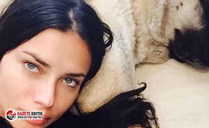Adriana Lima ikinci Sivas Kangalı'nı aldı
