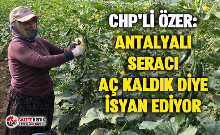 CHP'Lİ ÖZER: ANTALYALI SERACI AÇ KALDIK DİYE...