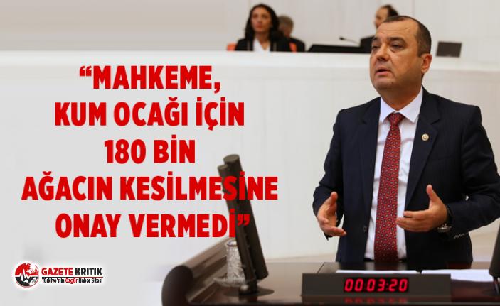 "CHP TEKİRDAĞ MİLLETVEKİLİ DR AYGUN:""ORMAN..."