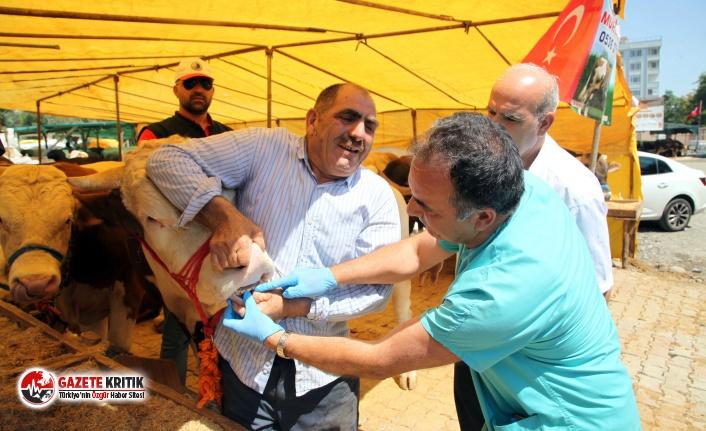 Kartal Belediyesi, Kurban Bayramı Hazırlıklarını...