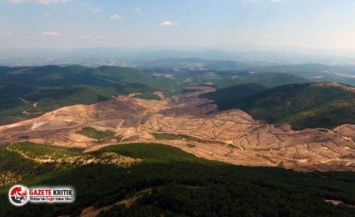 Kaz Dağları'nda altın arayan maden şirketinin...