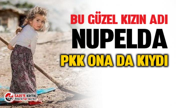 PKK'lıların tuzakladığı patlayıcı infilak etti: 2 kardeş yaşamını yitirdi