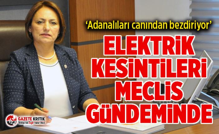 ADANA'DAKİ ELEKTRİK KESİNTİLERİ MECLİS...