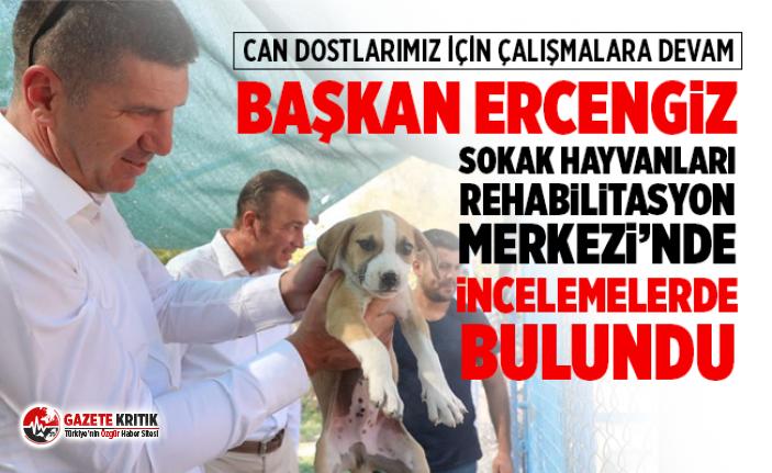 Başkan Ercengiz Sokak Hayvanları Rehabilitasyon...