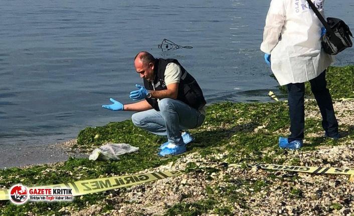 Beylikdüzü sahilde bebek cesedi bulundu