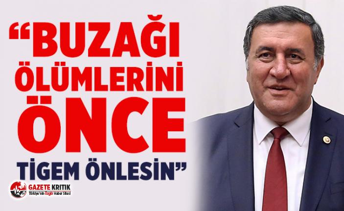 """CHP'li Gürer: """"Buzağı Yılı'nda da buzağı ölümleri devam etmiş"""""""