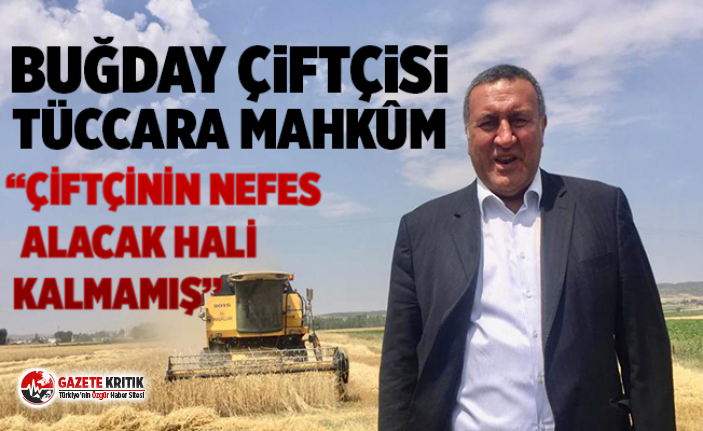 """CHP'li Gürer: """"Devletin ofisi ortada yok,..."""