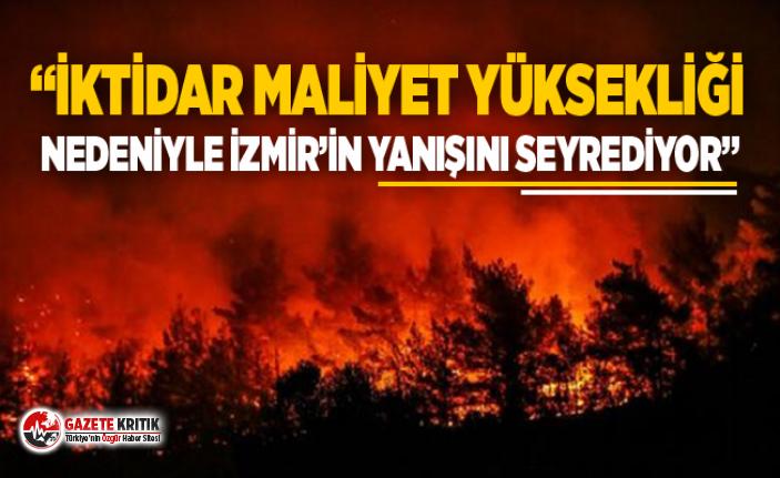 CHP'li Sertel'den İzmir orman yangınıyla ilgili çarpıcı açıklamalar