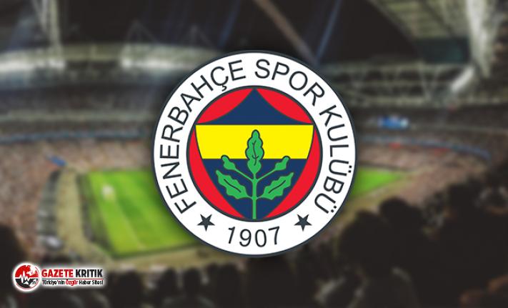 Deniz Türüç, Fenerbahçe'de