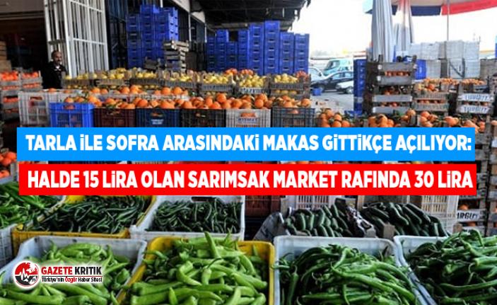 Tarla ile sofra arasındaki makas gittikçe açılıyor: Halde 15 lira olan sarımsak market rafında 30 lira